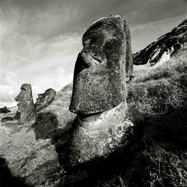 Moai at Ranu Raraku IV